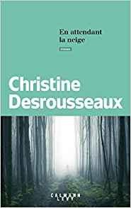 En attendant la neige, Christine DESROUSSEAUX,Calmann-Lévy